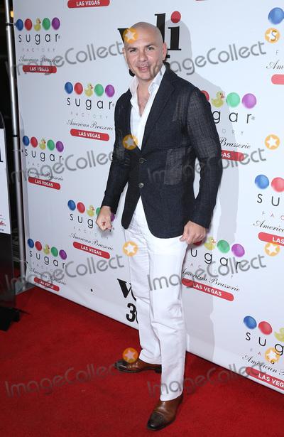 Pitbull Photo - Pitbull at Sugar Factory at Fashion Show Las Vegas