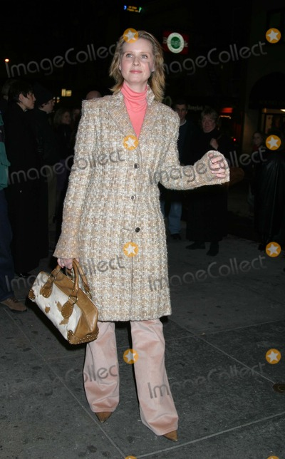 Cynthia Nixon Photo - Stockshop - Archival Pictures - Adam Nemser - 110476