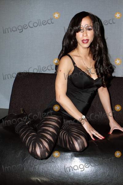 Heather Hunter Photo - January 29 2014 New York CityHeather Hunter at the opening of the new VIVID CABARET NYC Strip club on January 30 2014 in New York City