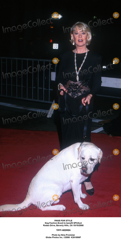 Tippi Hedren Photo - Archival Pictures - Globe Photos - 94268