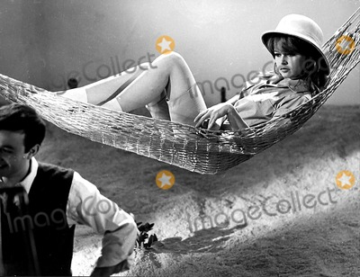 Brigitte Bardot Photo - Brigitte Bardot in the Hammock 1960 2317 Supplied by Ipol Archive I1188ipolGlobe Photos Inc Brigittebardotretro
