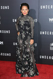 Amirah Vann Photo - 02 March 2016 - Los Angeles California - Amirah Vann Underground Los Angeles Premiere held at The Theatre At The Ace Hotel Photo Credit Winston BurrisAdMedia