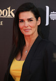 Angie Harmon Photo - 04 April 2016 - Hollywood California - Angie Harmon The Jungle Book Los Angeles Premiere held at the El Capitan Theatre Photo Credit SammiAdMedia