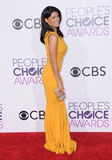 Andrea Navedo Photo - 18 January 2017 - Los Angeles California - Andrea Navedo 2017 Peoples Choice Awards held at the Microsoft Theater Photo Credit Birdie ThompsonAdMedia