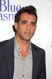 Bobby Cannavale Photo - 24 July 2013 - Los Angeles Ca - Bobby Cannavale LA Premiere of Blue Jasmine at The Academy of Motion Pictures Arts and Scienes in Los Angeles Ca Photo Credit BirdieThompsonAdMedia