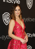 Minka Kelly Photo - 8 January 2017 - Los Angeles California - Minka Kelly InStyle  Warner Bros Pictures Golden Globes After Party 2017 held at the Beverly Hilton Hotel Photo Credit AdMedia