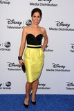 Ana Ortiz Photo - Ana Ortizat the Disney Media Networks International Upfronts Walt Disney Studios Burbank CA 05-19-13