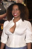 Lisa Nicole Carson Photo - Lisa Nicole Carson at the premiere of Warner Brothers Showtime in Hollywood 03-11-02