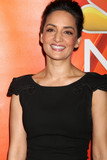 Archie Panjabi Photo - Archie Panjabiat the NBCUniversal TCA Summer 2016 Press Tour Beverly Hilton Hotel Beverly Hills CA 08-02-16
