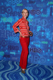 Ann Heche Photo - Anne Hecheat HBOs Post Emmy Awards Reception Pacific Design Center West Hollywood CA 09-18-16