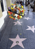Jack LaLanne Photo - A wreath of flowers sits atop Jack Lalannes star on the Hollywood Walk of Fame in tribute to the fitness exercise and nutritional expert and motivational speaker who passed away on January 23 at the age of 96 Los Angeles CA 12611