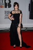 Daisy Lowe Photo - February 19 2014 LondonDaisy Lowe arriving at the 2014 BRIT Awards on February 19 2014 in London