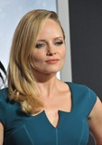 Marley Shelton Photo - Marley Shelton at the Los Angeles premiere of Hansel  Gretel Witch Hunters at Graumans Chinese Theatre HollywoodJanuary 24 2013  Los Angeles CAPicture Paul Smith  Featureflash