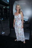 Alison Eastwood Photo - Alison Eastwood 09082016 The Los Angeles Industry Screening of Sully held at the Directors Guid of America Theatre in Los Angeles CA Photo by Izumi Hasegawa  HollywoodNewsWireco