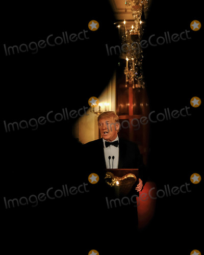 Photos From Donald Trump Remarks at Governor's Ball
