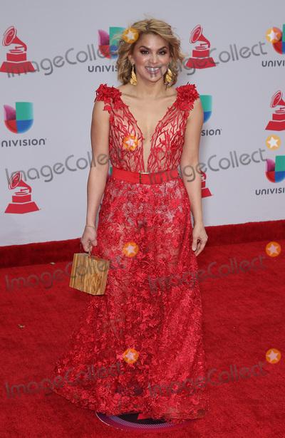 Photo - 2017 Latin Grammy Arrivals at MGM Grand Garden Arena