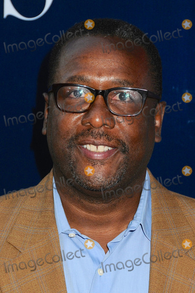 Wendell Pierce Photo - 10 August 2015 - West Hollywood California - Wendell Pierce CBS CW Showtime 2015 Summer TCA Party held at The Pacific Design Center Photo Credit Byron PurvisAdMedia