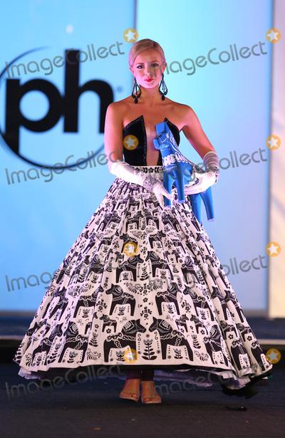 Photo - 18 November 2017 - Las Vegas NV -  Miss Sweden Frida Fornander  66th Miss Universe Pageant National Costume Show at Planet Hollywood resort Hotel and Casino Photo Credit MJTAdMedia
