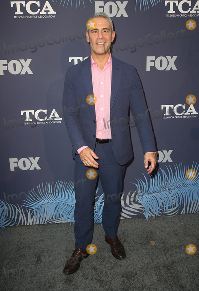 Andy Cohen Photo - 02 August 2018 - West Hollywood California - Andy Cohen FOX Summer TCA All-Star Party Photo Credit F SadouAdMedia