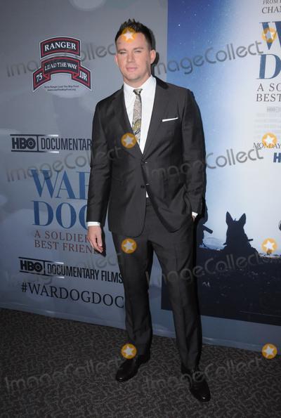 Photo - War Dog A Soldiers Best Friend Premiere - Los Angeles