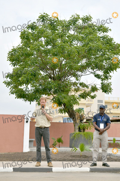 Princess of Wales Photo - 27092019 - Prince Harry Duke of Sussex delivers a speech in front of the Diana Tree in Huambo Angola on day five of the royal tour of Africa The Duke is visiting the minefield where his late mother Diana Princess of Wales was photographed in 1997 which is now a busy street with schools shops and houses Photo Credit ALPRAdMedia