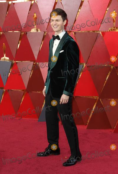 Photo - 90th Annual Academy Awards - Arrivals