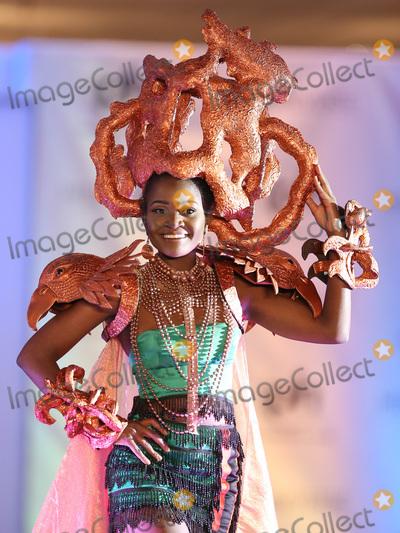Photo - 18 November 2017 - Las Vegas NV -  Miss Zambia Isabel Chikoti  66th Miss Universe Pageant National Costume Show at Planet Hollywood resort Hotel and Casino Photo Credit MJTAdMedia
