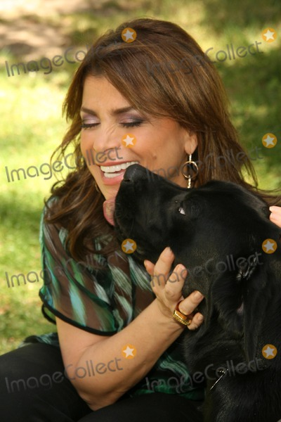 Photo - Kick Off for National Guide Dog Month