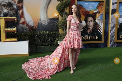 Photo - Dolittle Premiere