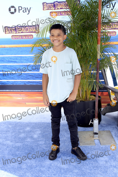 Photo - Hotel Transylvania 3 Summer Vacation World Premiere