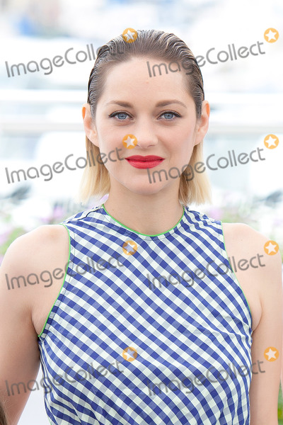 Photo - 71st Annual Cannes Film Festival - Angel Face (Gueule DAnge) Photocall