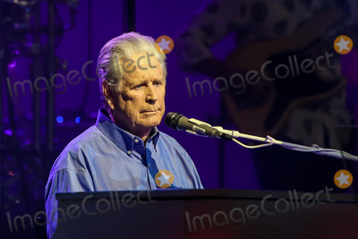 Photos From Brian Wilson Performs in Concert
