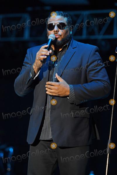 Photo - Al B Sure performs