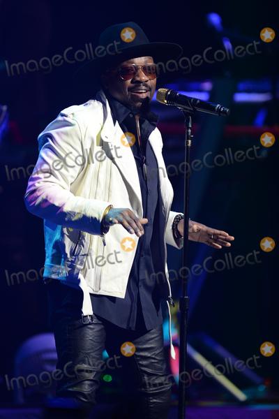 Photo - Anthony Hamilton in concert