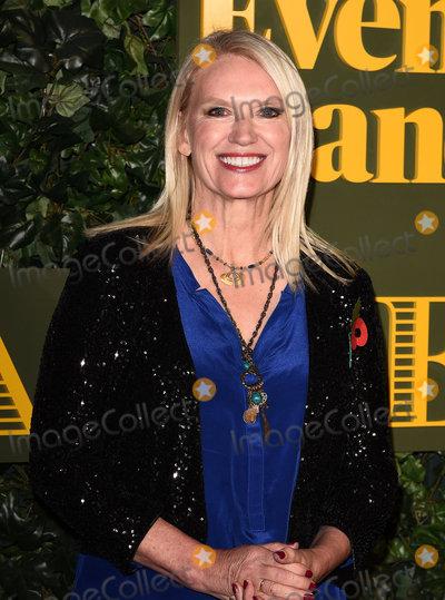 Anneka Rice Photo - London UK Anneka Rice at The Evening Standard Theatre Awards at The Old Vic The Cut London on Sunday 13 November 2016Ref LMK392-62745-141116Vivienne VincentLandmark Media WWWLMKMEDIACOM
