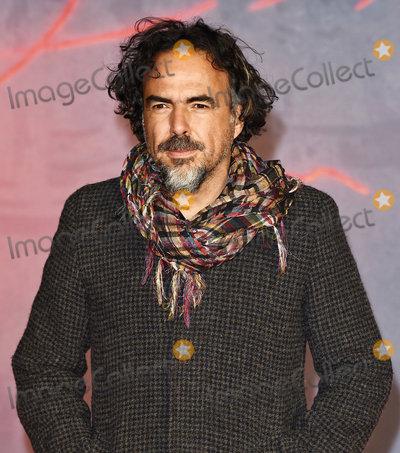 Alejandro GInarritu Photo - LondonUK Alejandro GInarritu at the UK Premiere of  The Revenant  at the Empire Leicester Square 14th January 2016 Ref LMK392-59129-150116Vivienne VincentLandmark Media WWWLMKMEDIACOM