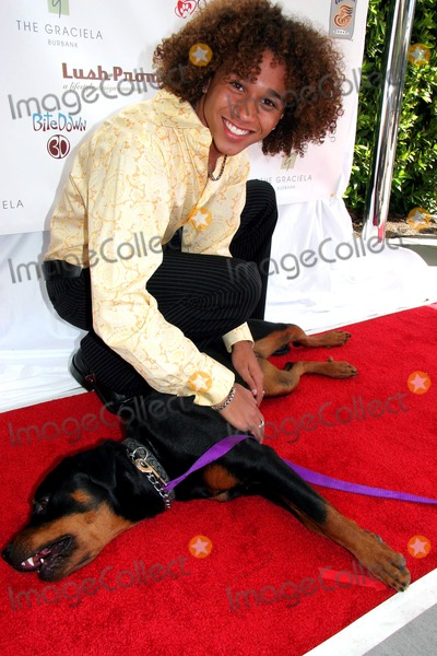 Photos From 'Sunday in the Valley' to Benefit New Leash on Life Animal Charity - Red Carpet
