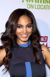 Ariel Meredith Photo - 13 February 2013 - Las Vegas NV -  Ariel Meredith  The 2013 Sports Illustrated Swimsuit models celebrate at the SI Swimsuit on Location event at Marquee Nightclub at The Cosmopolitan of Las Vegas Photo Credit mjtAdMedia