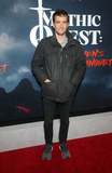 Aaron Geary Photo - 29 January 2020 - Hollywood California - Aaron Geary Premiere Of Apple TVs Mythic Quest Ravens Banquet held at The Cinerama Dome Photo Credit FSAdMedia