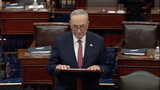 The Used Photo - In this image from United States Senate televisionUnited States Senate Majority Leader Chuck Schumer (Democrat of New York) makes remarks following the verdict of the Senate on the single Article of Impeachment against former US President Donald J Trump during Day 5 of the second impeachment trial of the former president in the US Senate in the US Capitol in Washington DC on Saturday February 13 2021Mandatory Credit US Senate TV via CNPAdMedia
