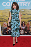 Tina Fey Photo - Tina Fey at the World Premiere of WINE COUNTRY at the Paris Theater in New York New York  USA 08 May 2019