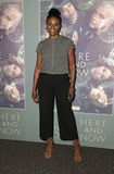 Adina Porter Photo - 05 February 2018 - Los Angeles California - Adina Porter Los Angeles Premiere of HBOs new dramaseries Here and Now held at the Directors Guild of America Photo Credit AdMedia