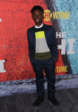 Alex Hibbert Photo - 03 January 2018 - Los Angeles California - Alex Hibbert Premiere of Showtimes new series TheChi held at Downtown Independent in Los Angeles Photo Credit Birdie ThompsonAdMedia