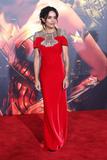 Lisa Bonet Photo - 13 November 2017 - Hollywood California - Lisa Bonet  Justice League Los Angeles Premiere held at the Dolby Theater Photo Credit F SadouAdMedia