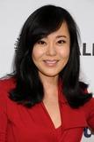 Yunjin Kim Photo - 16 March 2014 - Hollywood California - Yunjin Kim Kim Yunjin PaleyFest 2014 - Lost held at the Dolby Theatre Photo Credit Byron PurvisAdMedia