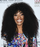 Tina Lifford Photo - 06 February 2019 - Hollywood California - Tina Lifford 10th Annual AAFCA Awards held at Taglyan Complex Photo Credit Birdie ThompsonAdMedia