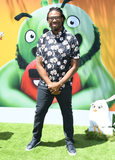 Angry Bird Photo - 10 August 2019 - Westwood California - Matthew Cherry Sonys The Angry Birds Movie 2 Los Angeles Premiere held at Regency Village Theater Photo Credit Birdie ThompsonAdMedia