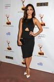 Azita Ghanizada Photo - 17 September 2013 - North Hollywood California - Azita Ghanizada Academy of Television Arts  Sciences Dynamic and Diverse 2013 Emmy Nominee Reception Photo Credit Byron PurvisAdMedia