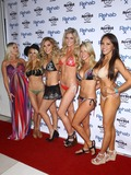 Amanda Vanderpool Photo - 10 March 2014 - Las Vegas Nevada - Melissa Dawn Dani Mathers Crystal Hefner Carly Lauren Amanda Vanderpool Caya Hefner Joanna and Marta Krupa host REHAB Bikini Invitational Round 1 with DJ Set by Crystal Hefner at Rehab at The Hard Rock Hotel and Casino Photo Credit MJTAdMedia