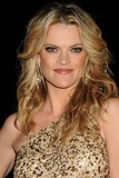 Missi Pyle Photo - 21 January 2012 - Beverly Hills California - Missi Pyle 23rd Annual Producers Guild Awards held at the Beverly Hilton Hotel Photo Credit Byron PurvisAdMedia